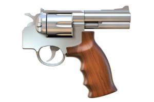 gun-handle
