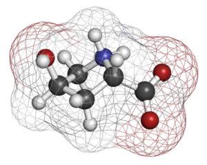 amino-acid-molecule_214470439_600px
